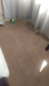 Carpet cleaning in South Bermondsey, SE16 postcode area, Southwark