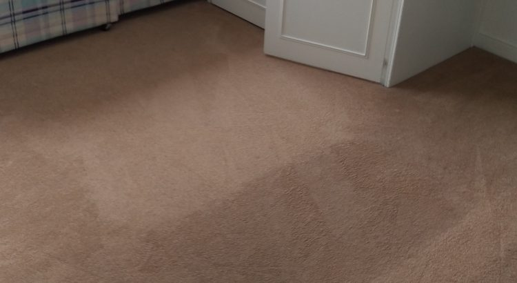Carpet cleaning in SE16 postcode area, Surrey Quays, Southwark