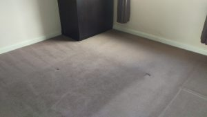 Carpet cleaning in SW9 postcode area, Stockwell, Lambeth