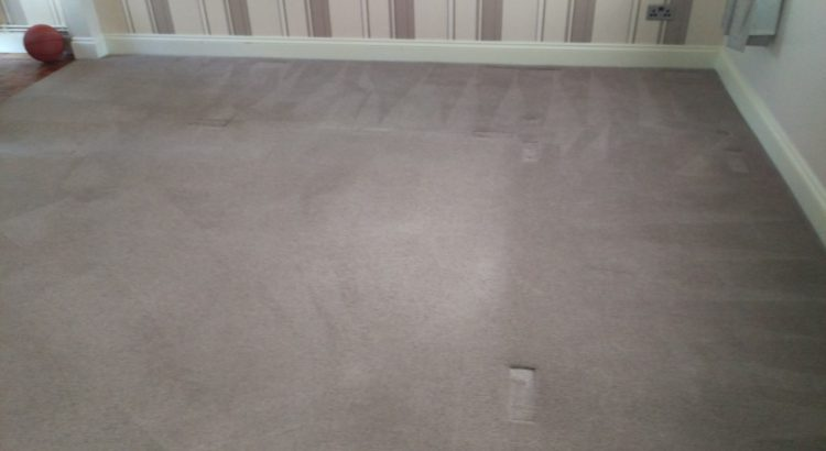 Carpet cleaning in SE15 postcode area, Nunhead
