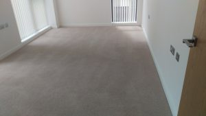 Carpet cleaning in Holland Park , W14 postcode area, Hammersmith and Fulham