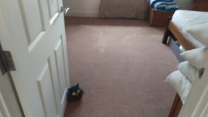 Carpet & Upholstery cleaning in Welling, DA16 postcode area, Greenwich