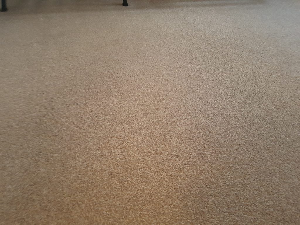 Carpet Cleaning In Edenbridge Tn8 Postcode Area Mvir