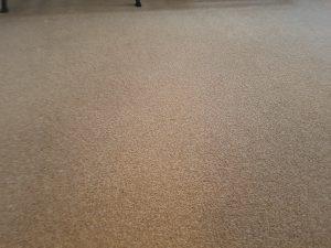 Carpet cleaning in Edenbridge, TN8 postcode area
