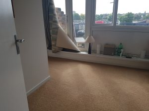 Carpet cleaning in Southwark, SE26 postcode area