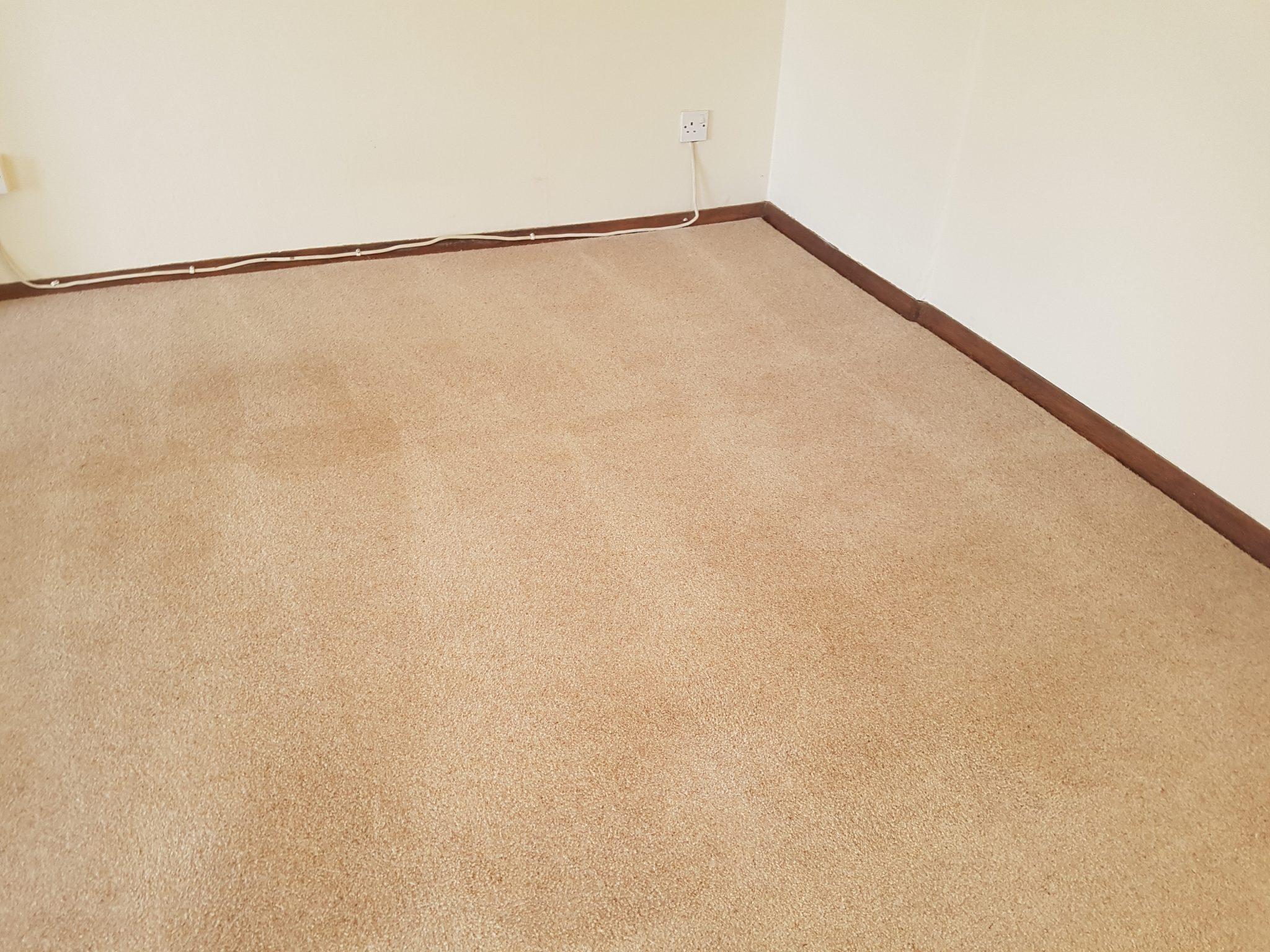Carpet Cleaning In Bexley Se9 Postcode Area Mvir