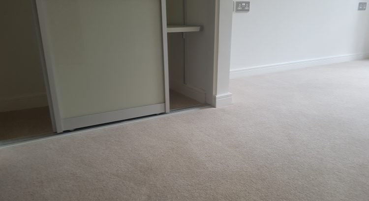 Carpet cleaning in Muswell Hill, N10 postcode area