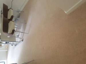 Carpet cleaning in Lingfield, RH7  postcode area