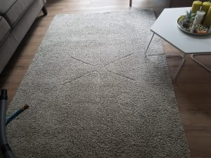 Carpet cleaning in West Norwood,SE27 postcode area