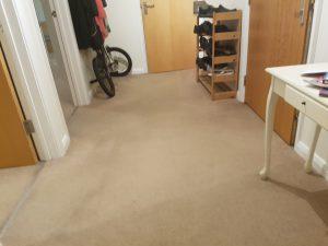 Carpet cleaning in Dagenham, RM8 postcode area