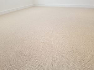 Carpet cleaning in Sidcup, DA15 postcode area