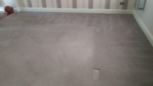 Carpet cleaning in Croydon, CR0 postcode area