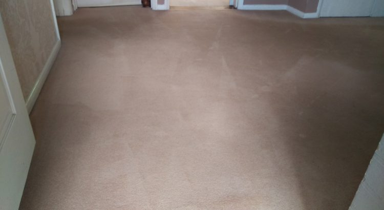 Carpet cleaning in Eltham, SE9 postcode area