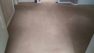 Carpet cleaning in Grove Park, SE12 postcode area