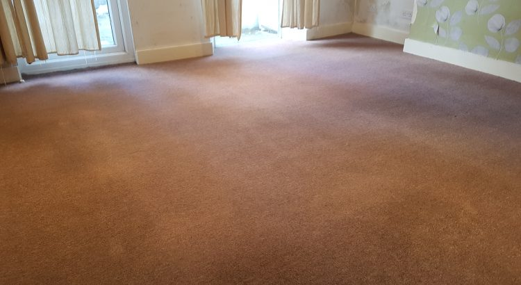 Carpet cleaning in Evelyn, SE8 postcode area