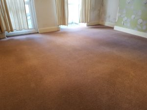Hammersmith carpet cleaning - W11 carpet cleaning