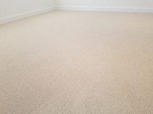 Carpet cleaning Lewisham - SE23 carpet cleaning